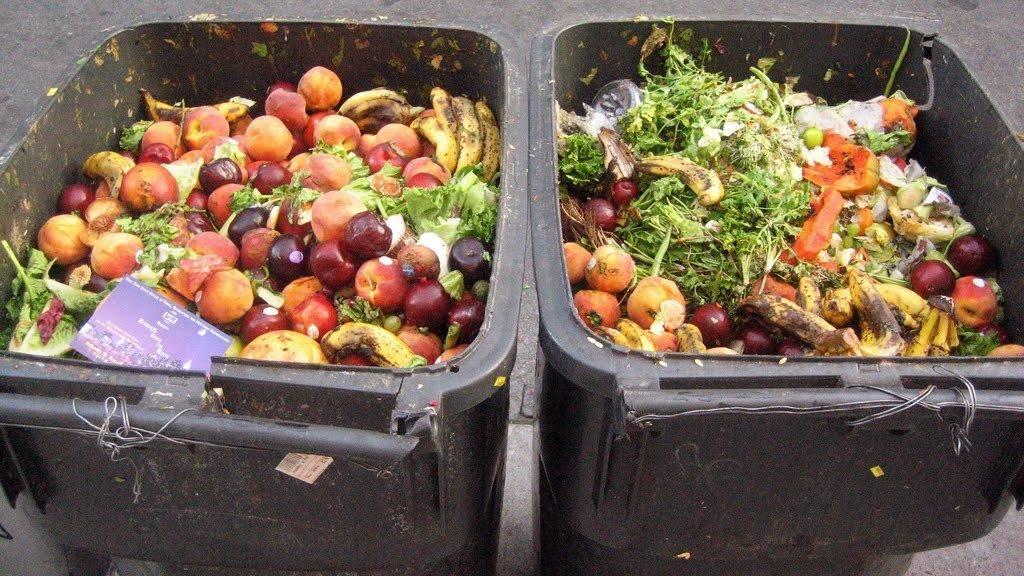 Évente 1,8 millió tonna élelmiszerhulladék keletkezik Magyarországon