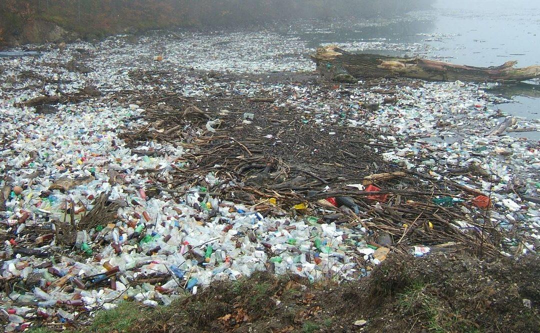 2021-től betiltaná az Európai Parlament az egyszer használatos műanyagtermékeket